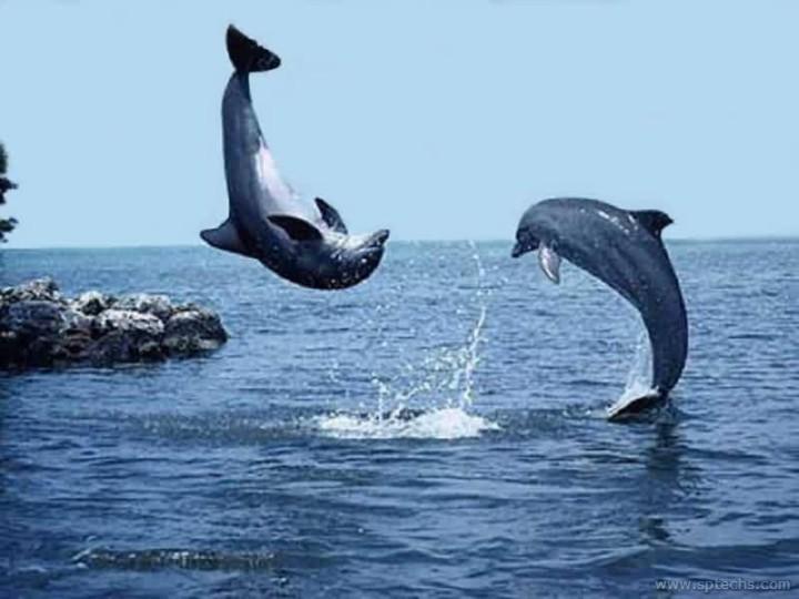 بالصور صور مناظر جميلة , احلى مناظر البحر 4668