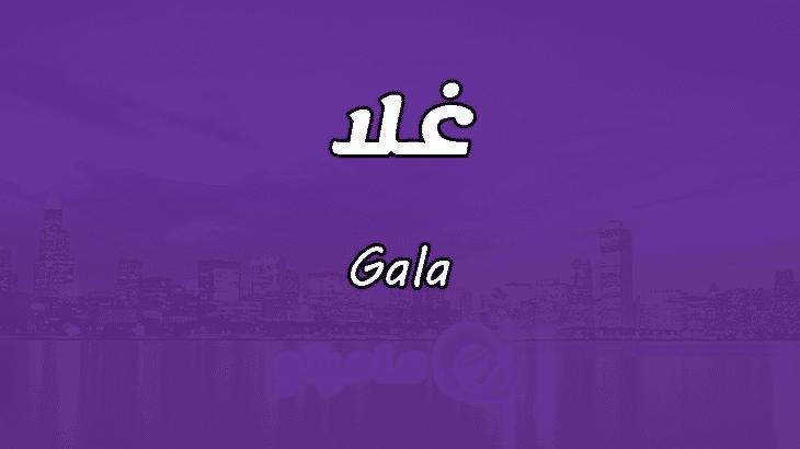 صوره معنى اسم غلا , معانى الاسماء العربية