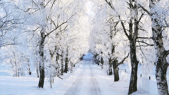 بالصور صور عن الشتاء , خلفيات عن البرد 6432