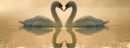 بالصور اروع رسائل الحب , اجمل رسائل للحب 2223 10