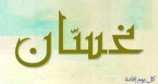معنى اسم غسان , ماهو المعنى لاسم غسان
