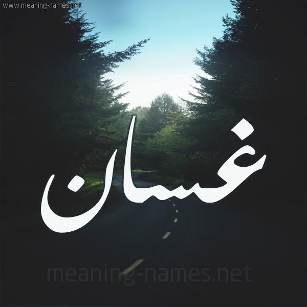 صورة معنى اسم غسان , ماهو المعنى لاسم غسان
