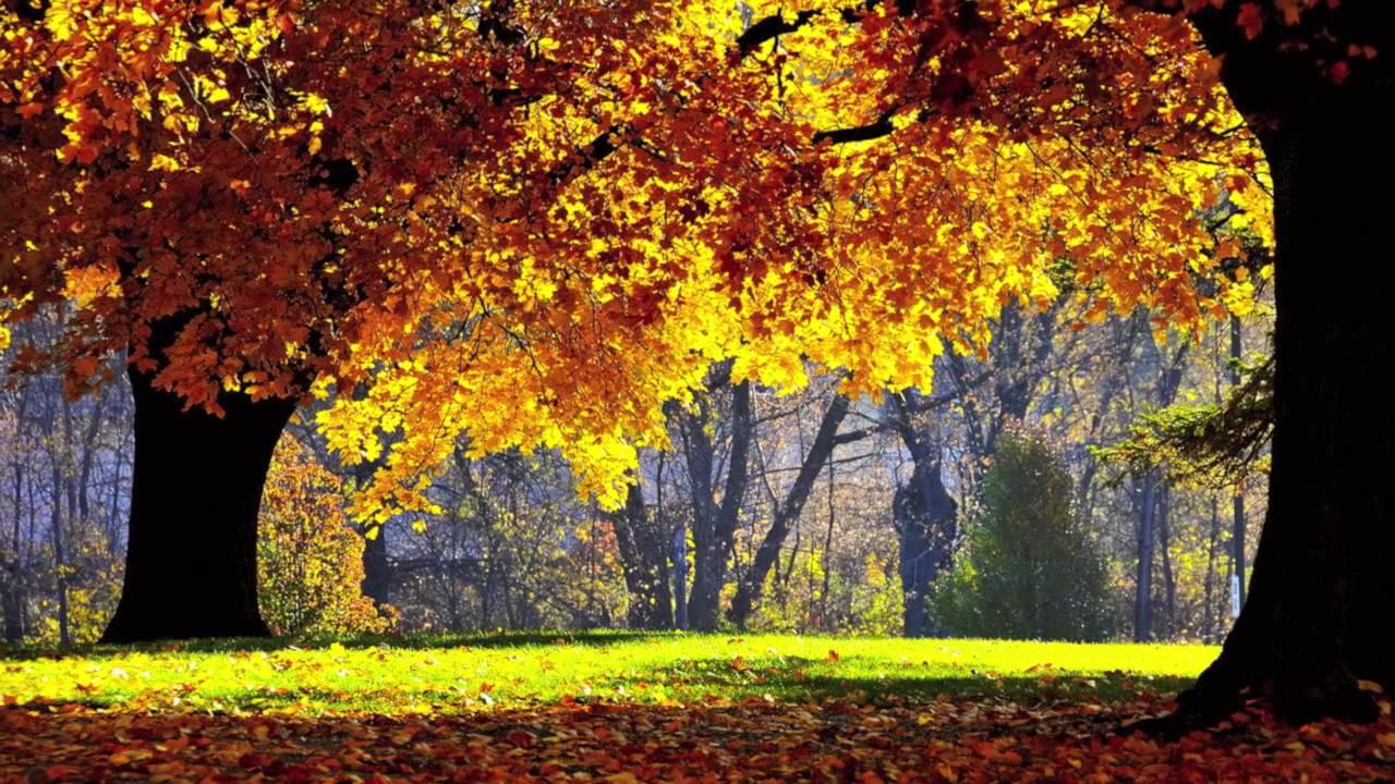 بالصور صور الطبيعة الجميلة , اجمل الصور لمناظر الخلابة 2911 4