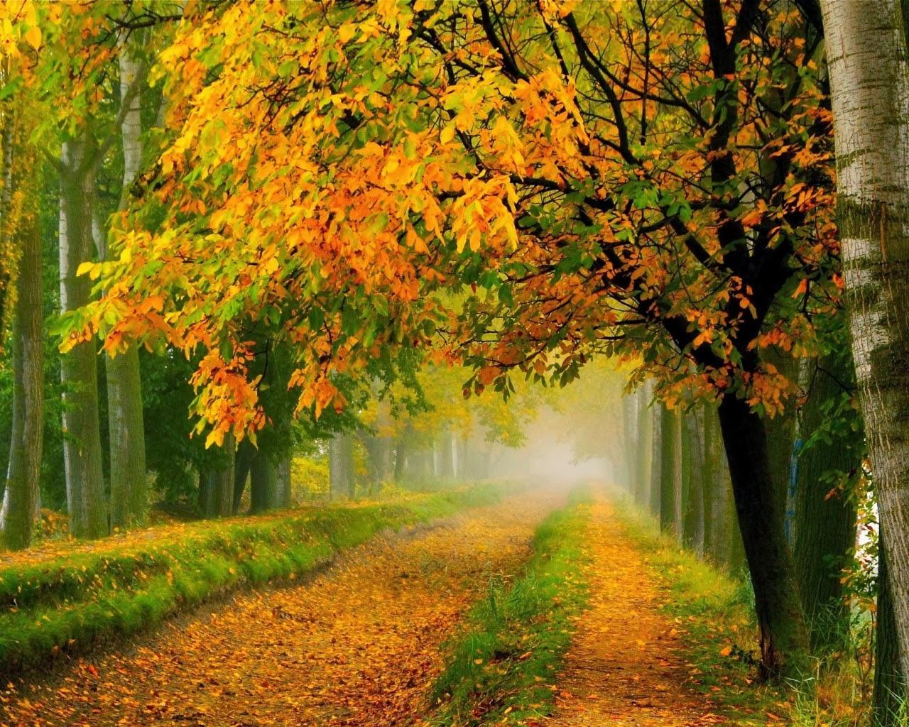 بالصور صور الطبيعة الجميلة , اجمل الصور لمناظر الخلابة 2911 7