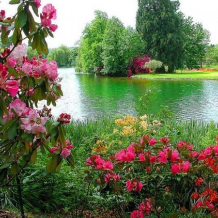 بالصور خلفيات طبيعة , اجمل الخلفيات الطبيعية الخلابة 2927 1