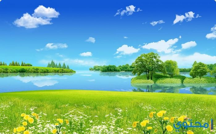 بالصور خلفيات طبيعة , اجمل الخلفيات الطبيعية الخلابة 2927 6