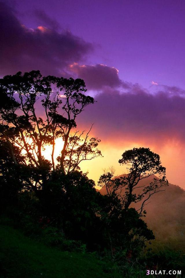 بالصور خلفيات طبيعة , اجمل الخلفيات الطبيعية الخلابة 2927 9