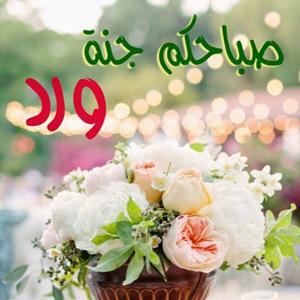 بالصور احلى صباح الخير , صور جميلة مكتوب عليها صباح الخير 3196 8
