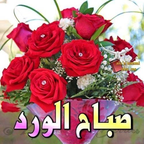 بالصور احلى صباح الخير , صور جميلة مكتوب عليها صباح الخير 3196 9