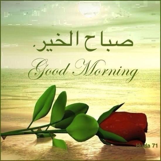 بالصور صور مكتوب عليها صباح الخير , اجمل صورة مكتوب عليها صباح الخير 3201 6