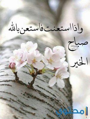 بالصور رسالة صباح الخير , اجمل الرسائل صباح الخير 3210 9