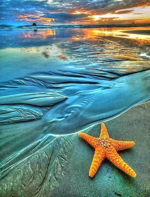 بالصور صور عن البحر , اجمل صور للبحر 3921 7