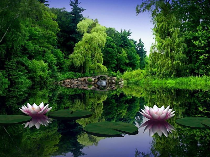 صور صور خلفيات طبيعيه , اجمل مناظر طبيعية