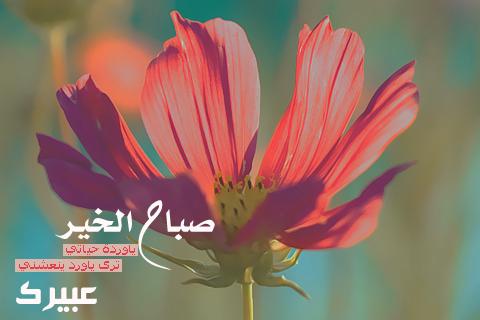 بالصور اجمل صور صباحيه , صور صباح الخير 5237 8