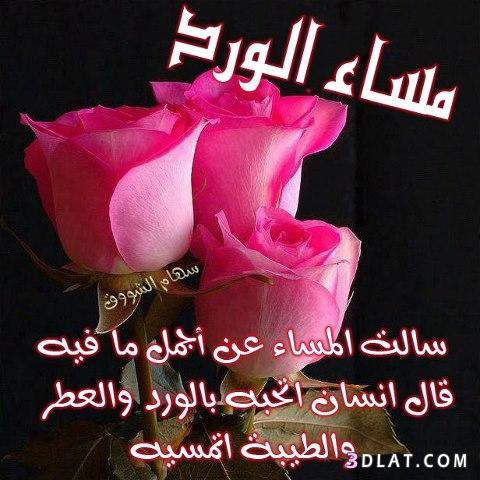 بالصور مساء الورد حبيبي , رسائل مساء الخير 5284 5