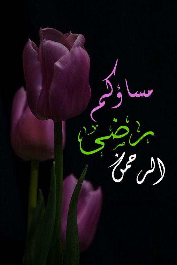 بالصور مساء الخير كلمات , عبارات مساء الخير 5290 4