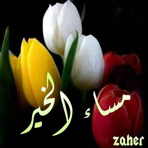 بالصور صور صباح ومساء الخير , صور صباحيه ومسائيه 5321