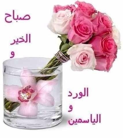 بالصور بيسيات صباحيه , توبيكات بداية اليوم 6212 6
