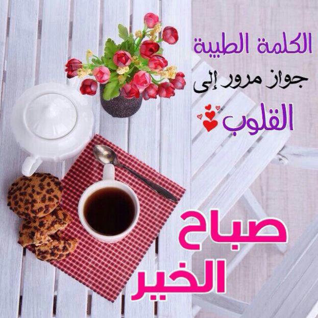 بالصور بيسيات صباحيه , توبيكات بداية اليوم 6212 7