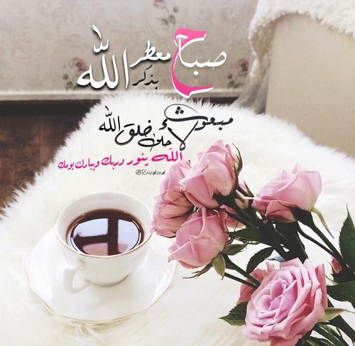 بالصور بيسيات صباحيه , توبيكات بداية اليوم 6212 8