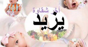 صوره معنى اسم يزيد , معاني اسماء شخصية روعة