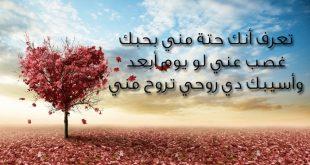 صوره اجمل رسالة حب , ارقي العبارات و الرسايل عن الحب