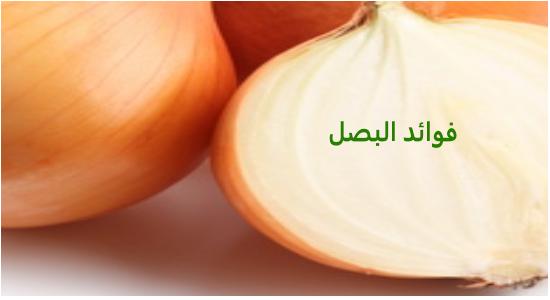 بالصور فوائد البصل , صور عن فوائد اكل البصل 1170