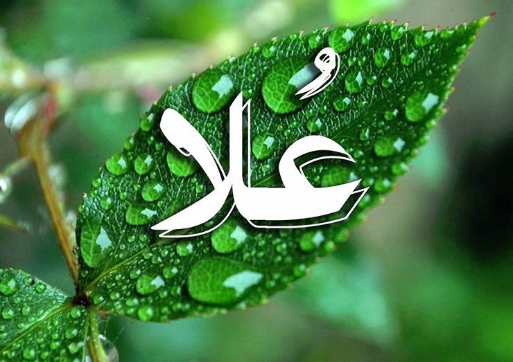 بالصور صور اسم علا , اجمل صورة لاسامى البنات اسم علا 2159 4