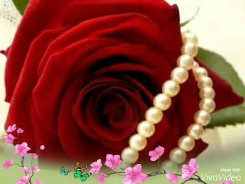 صوره صور الورد , اجمل صورة للورود