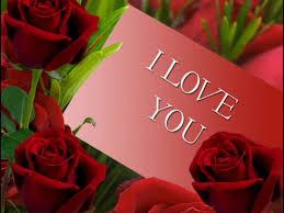 بالصور صور احبك , اروع صور الحب والغرام 2600 4