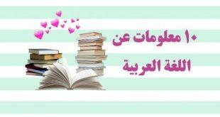 صور معلومات عن اللغه العربيه , تعلم اصول اللغه العربيه