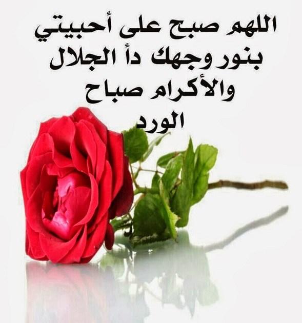 بالصور صور صباحيه جميله , اجدد واروع صور الصباح 4063 4