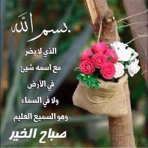 بالصور صور صباحيه جميله , اجدد واروع صور الصباح 4063 6