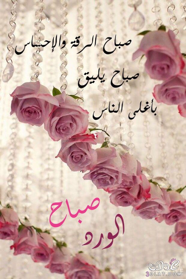 بالصور صباح الخير مسجات , صور صباح الخير 126 2