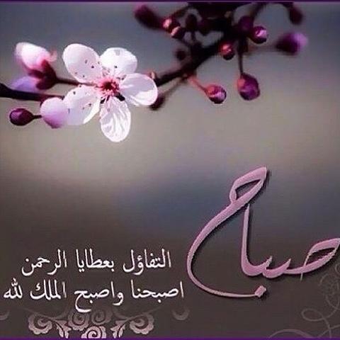 بالصور صباح الخير مسجات , صور صباح الخير 126 4