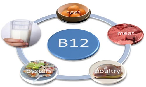 صوره فيتامين ب١٢ , معلومات عن فيتامين ب 12
