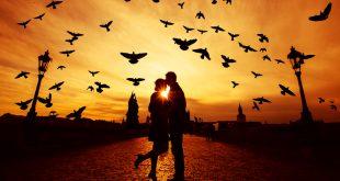 بالصور بيسيات حب , اجمل صور للحب 1324 12 310x165