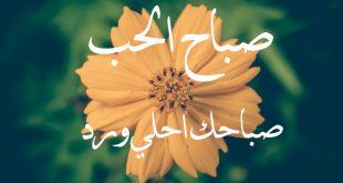 صوره صباح الحب والشوق , اجمل العبارات التي تقال في الصباح