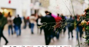 صوره رمزيات حلوه , خلفيات جميلة و حلوة