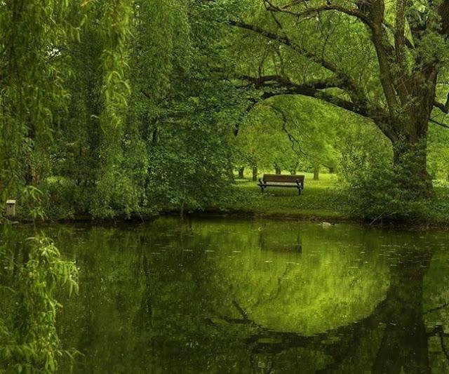 بالصور جمال الطبيعة , اجمل الخلفيات عن الطبيعة 1467 11