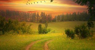 صورة جمال الطبيعة , اجمل الخلفيات عن الطبيعة