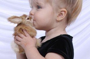 بالصور اطفال بنات حلوين , خلفيات اطفال بنات جميلة 1495 15 310x205