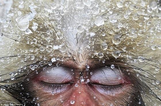 بالصور صورعالمية روعة , اجمل صور عالمية 1502 10
