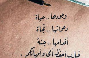 بالصور كلام جميل فيس بوك , عبارات جميلة للفيس بوك 1514 11 310x205