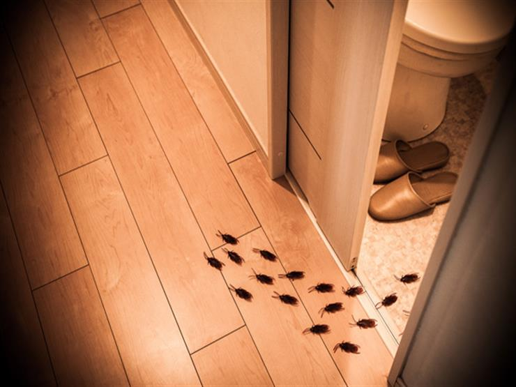 صورة علامات الحسد في البيت , كيف تعرف وجود حسد في البيت