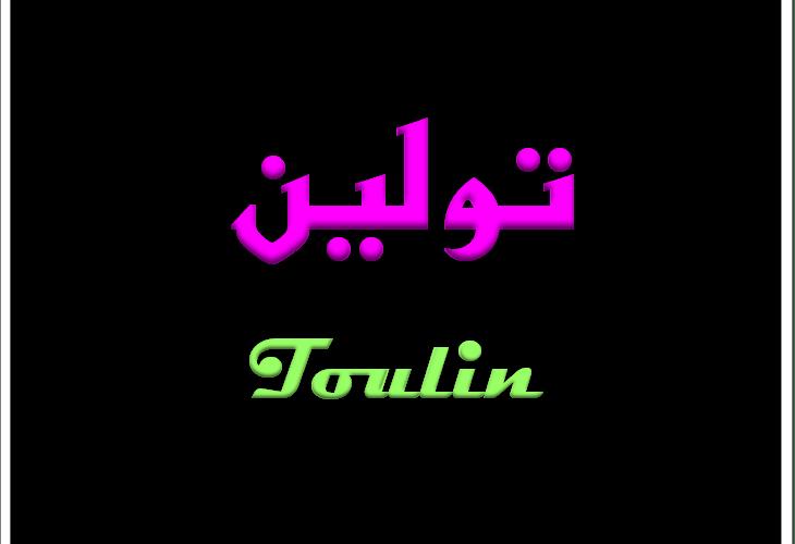 صورة معنى اسم تولين , مدلول و معنى اسم تولين 1567 2