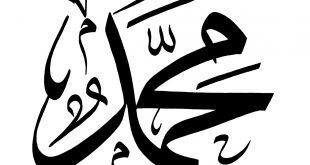 صوره صور عن اسم محمد , اجمل صور لاسم محمد