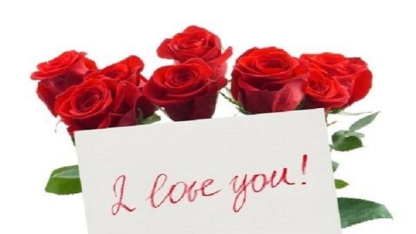 بالصور زهور الحب , ما هي زهور الحب 184 1