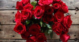 بالصور زهور الحب , ما هي زهور الحب 184 12 310x165