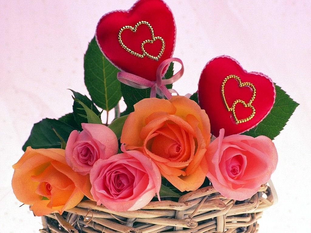بالصور زهور الحب , ما هي زهور الحب 184 3